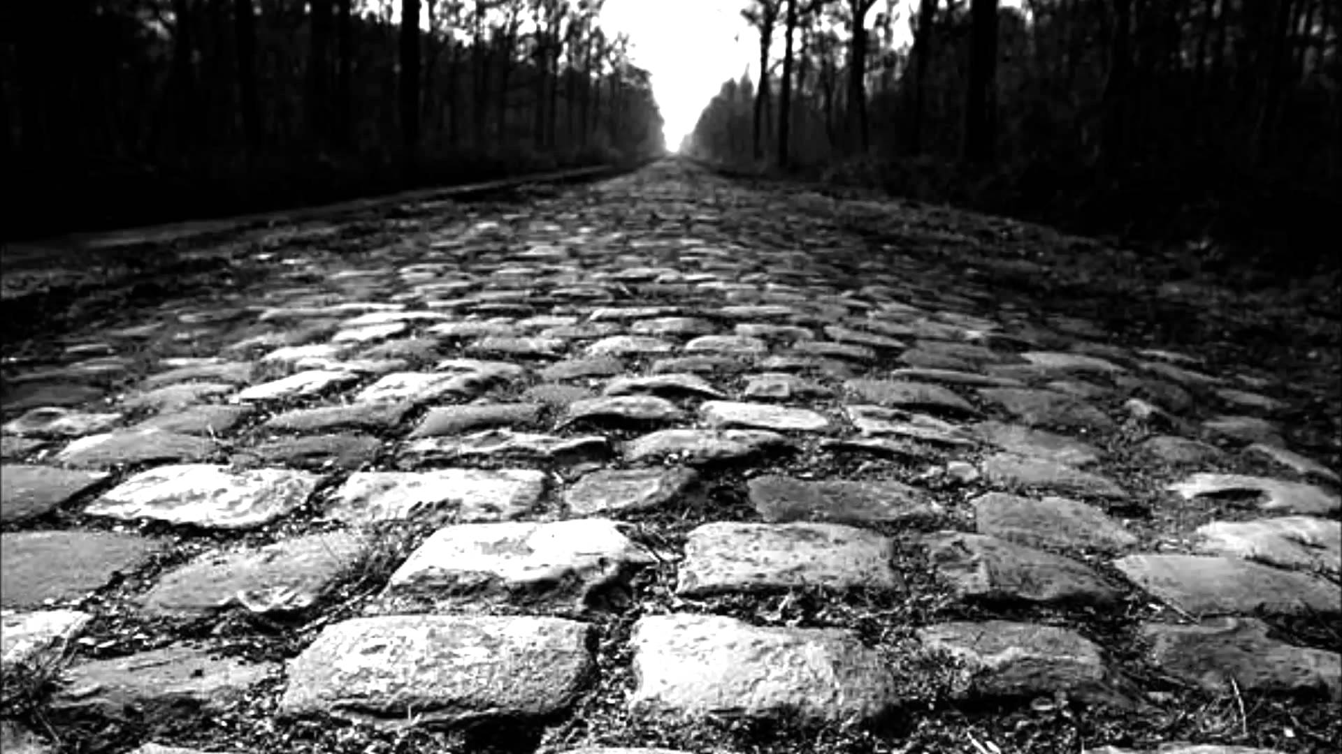 Tour of Flanders and Paris Roubaix